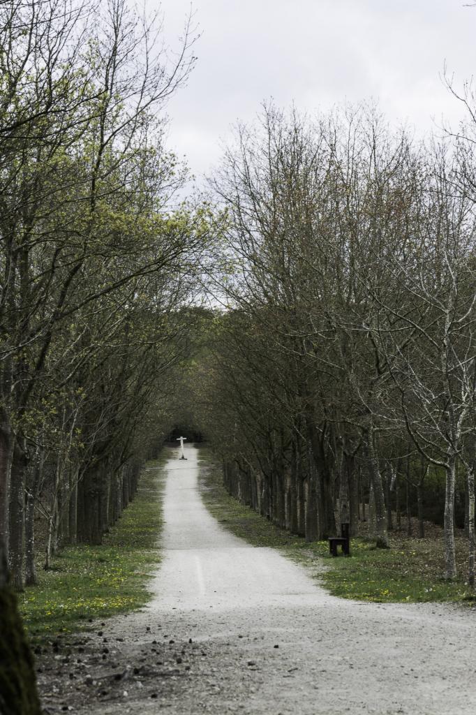 Domaine d'Angervilliers